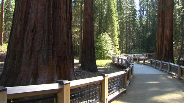 0614-ctm-yosemitesequoias-blackstone-1590594-640x360.jpg