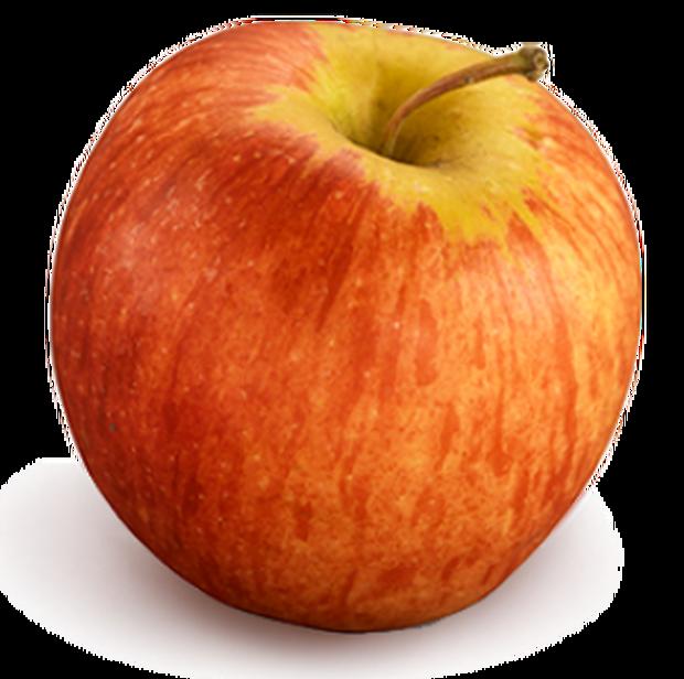 apple-gala-337x335.png
