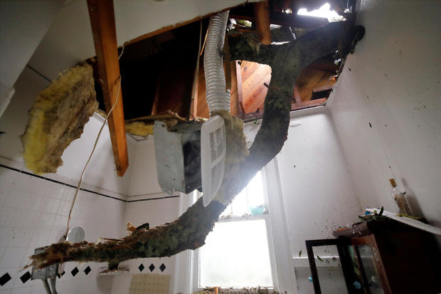 The limb of a large oak tree toppled by Hurricane Florence pokes through the ceiling of a destroyed bathroom in a home in Wilmington