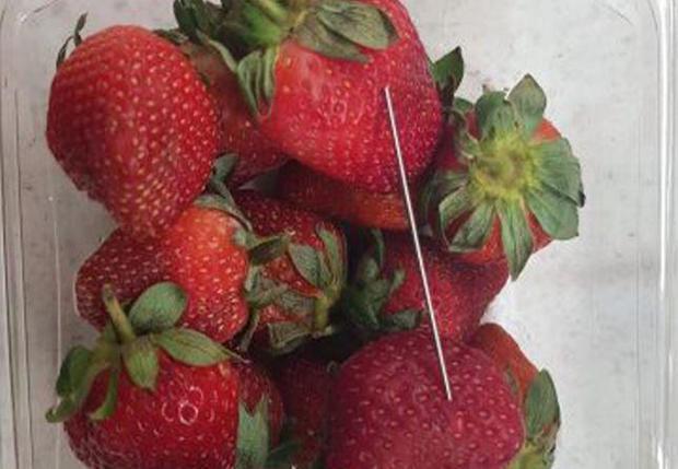 australia-needles-strawberries.jpg