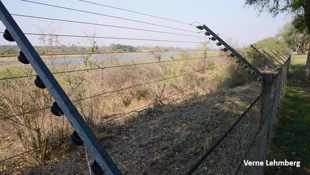 kruger-national-park-electric-fence-620.jpg