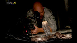 60 Minutes cameraman describes being bitten by snake