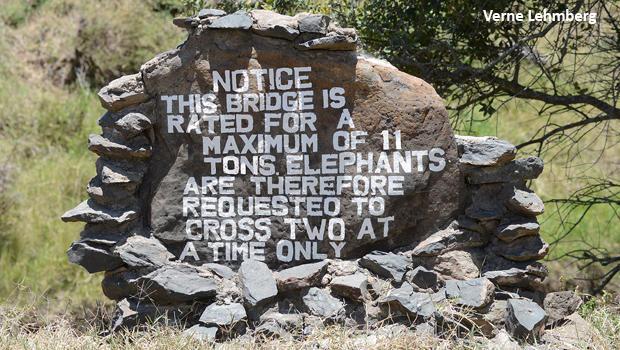 elephants-on-bridge-sign-verne-lehmberg-620.jpg