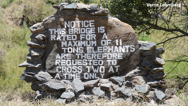 elephants-on-bridge-sign-verne-lehmberg-620.jpg