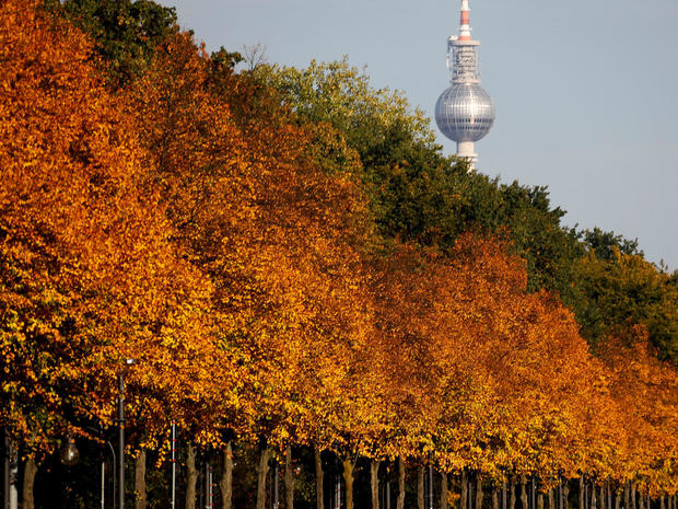 Autumnal trees of the Tiergarten park are pictured in front of the television tower in Berlin