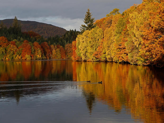 Autumnal foliage is reflected on Loch Faskally Perthshire, Scotland