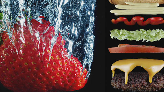 images-by-nathan-myhrvold-from-the-photography-of-modernist-cuisine-cooking-lab-promo.jpg