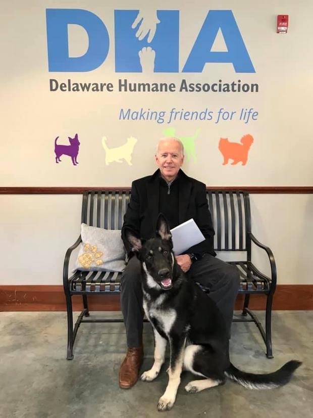 """joe-biden-rescue-dog-2018-11-17.jpg """"srcset ="""" https://cbsnews2.cbsistatic.com/hub/i/r/2018/11/18/a1683953-8e60-439d-877d-635a60b2d897 /resize/620x/86615466eca4b56e0e9d28cf76d3e713/joe-biden-rescue-dog-2018-11-17.jpg 1x """"/></span><figcaption> <div class="""