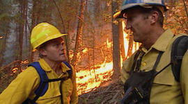 From the archives: The age of megafires