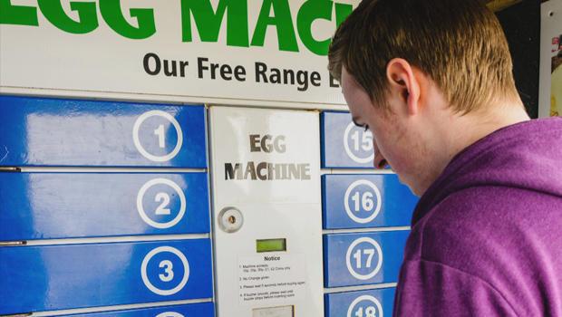 egg-vending-machine-620.jpg