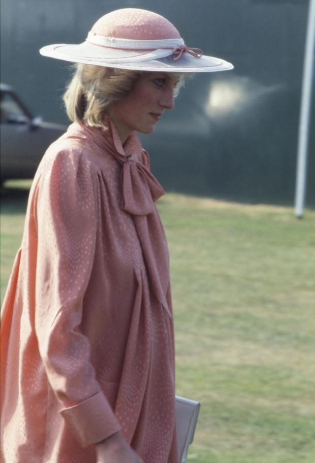 Windsor Princess Diana