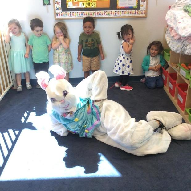 bad-bunny-collsully.jpg