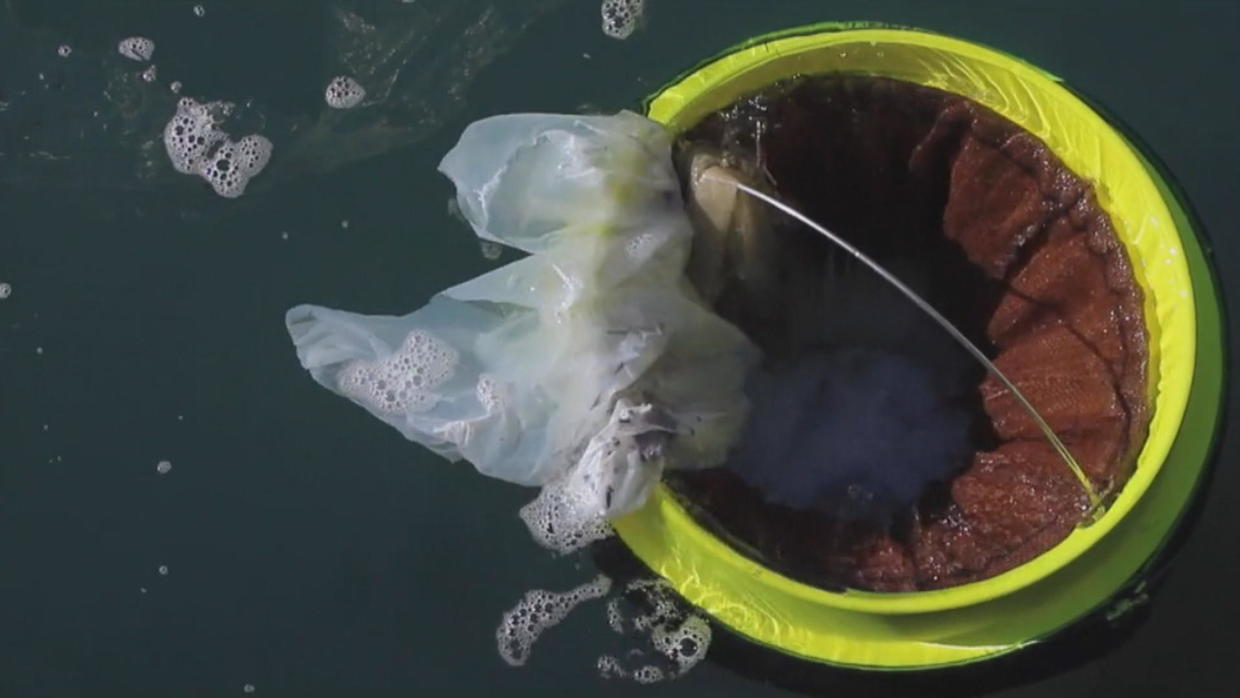 Seabins are helping clean up marinas around the world