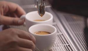 True espresso love: Attending a university of coffee