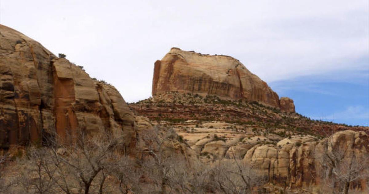 Nature: Bears Ears National Monument