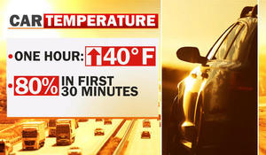 Intense heat wave could cause damage to your car