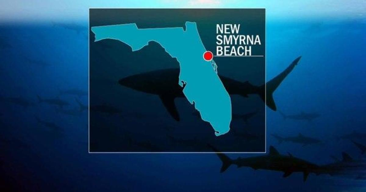 3 people bitten by sharks at Florida beach