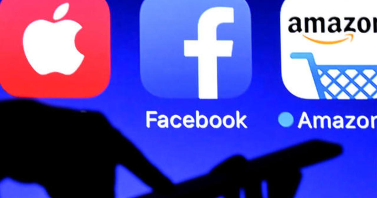 Journalist attempts to hide personal data from big tech