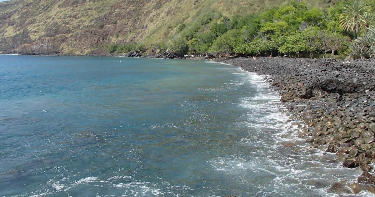 Shark bites woman twice while she's swimming in Hawaii bay