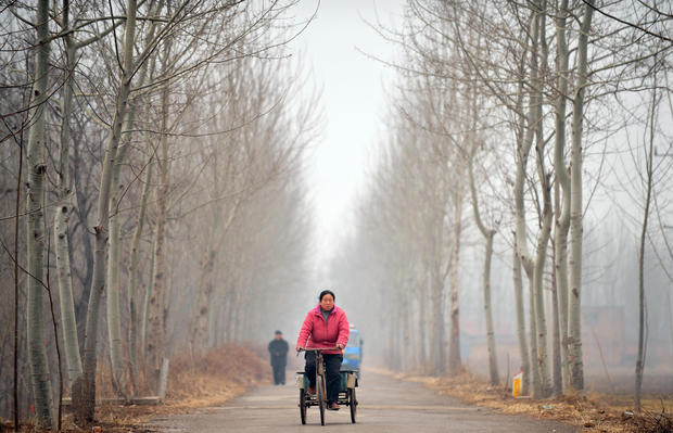 A farmer rides along a country road in D
