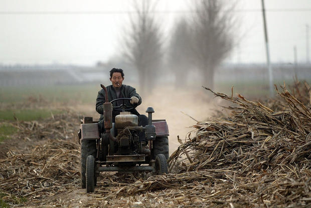 Chinese Farmers Face Stricter Rules On Farm Product Exports From Japan And EU