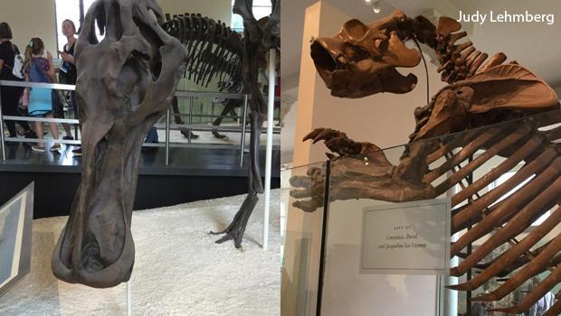 duck-billed-dinosaur-giant-sloth.jpg