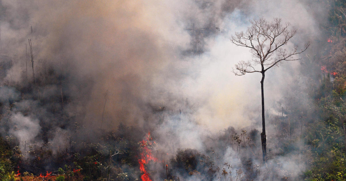 <b>Brazil military begins operations to fight Amazon rainforest fires</b>