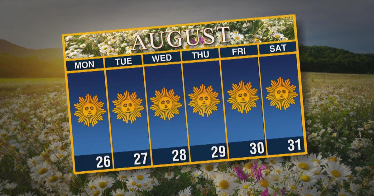 Calendar: Week of August 26