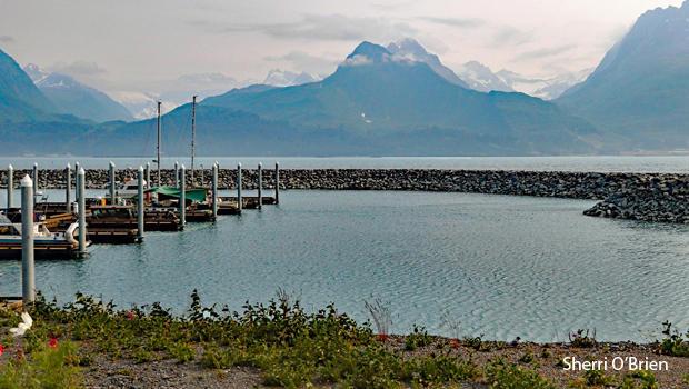 valdez-harbor-alaska-sherri-obrien-620.jpg