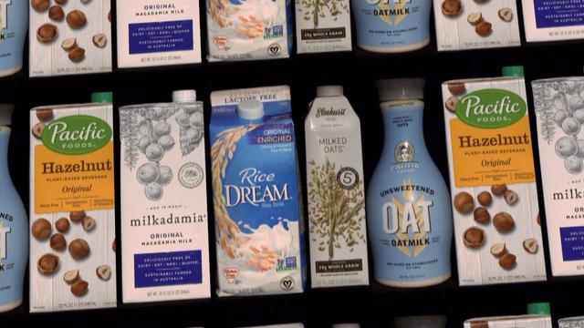 plant-based-milk-drink-promo.jpg
