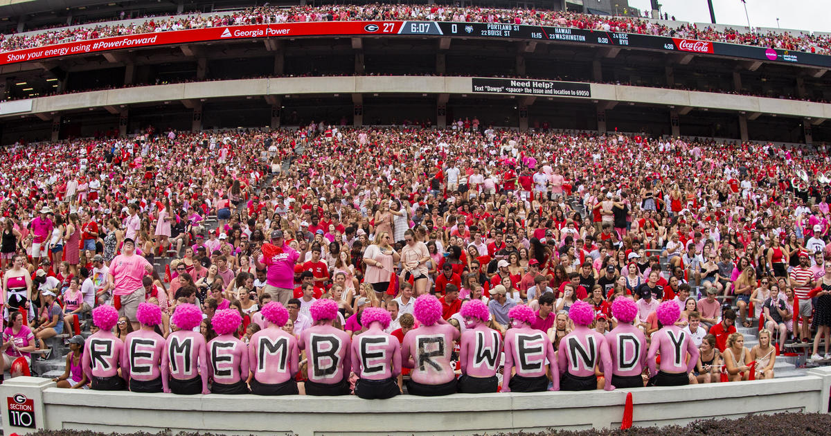 Image result for UGA pink out