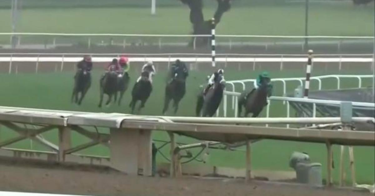34th horse has died at Santa Anita Park racetrack in California