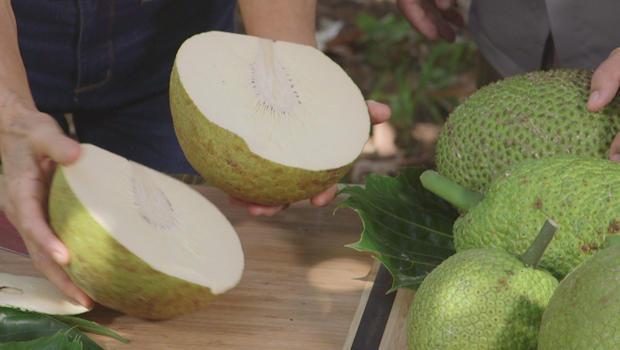 breadfruit-cut-open-620.jpg