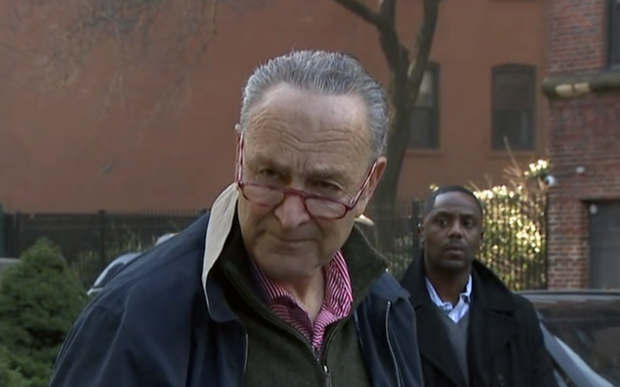 schumer.png