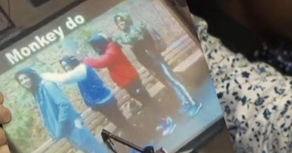 "Outcry over photo of 4 black students, gorilla, ""Monkey do"" label thumbnail"