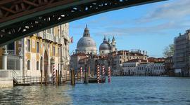 Venice is Drowning, Joaquin Phoenix, Rafa