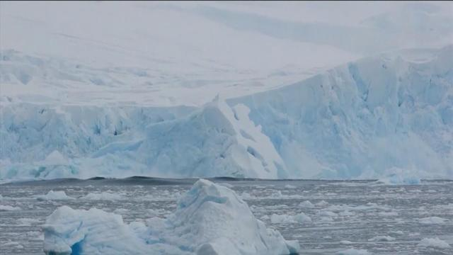 Massive iceberg collapses into the ocean