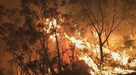 Climate change's role in Australia's fires