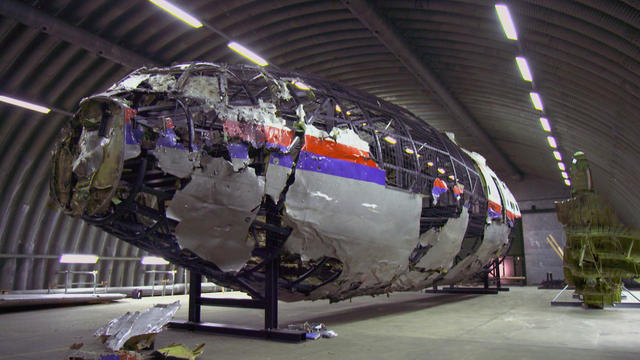 mh17article.jpg