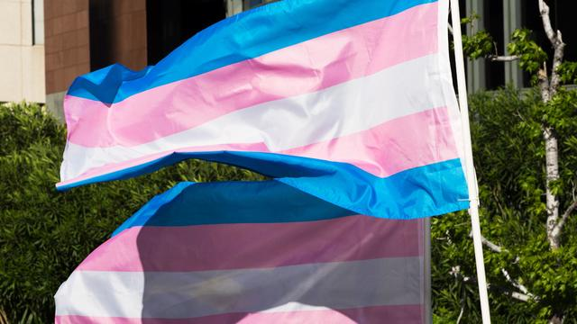 US-TRANSGENDER-DAY-OF-VISIBILITY-GENDER