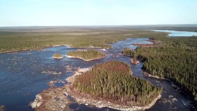 cbsn-fusion-us-toilet-paper-companies-have-been-destroying-worlds-largest-intact-forest-for-decades-report-thumbnail-526420-640x360.jpg