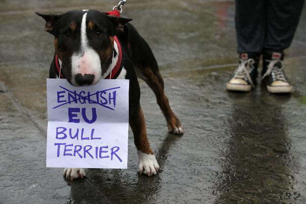 BRITAIN-EU-POLITICS-BREXIT-PROTEST