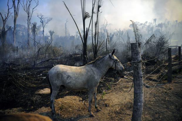 TOPSHOT-BRAZIL-ENVIRONMENT-FIRE