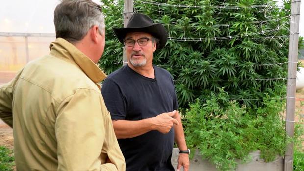 jim-belushi-cannabis-farmer-with-luke-burbank-c-620.jpg