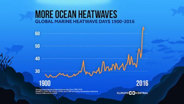 more-ocean-heatwaves.jpg