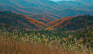 naturegreatsmokymountainsfallcolors1920-597776-640x360.jpg