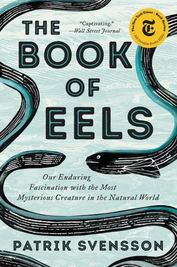 book-of-eels-cover-ecco.jpg