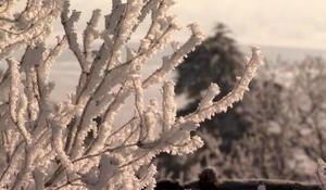 winterminnesota1920-632368-640x360.jpg