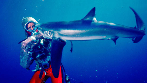 playing-with-sharks-50653632161-7155bfec89-o.jpg