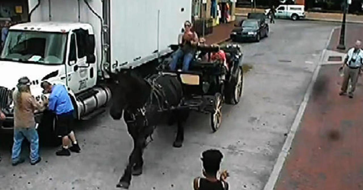 Watch: Out-of-control horse-drawn carriage rams into cars